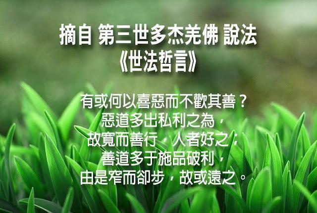 第三世多杰羌佛說《世法哲言》(四十一)