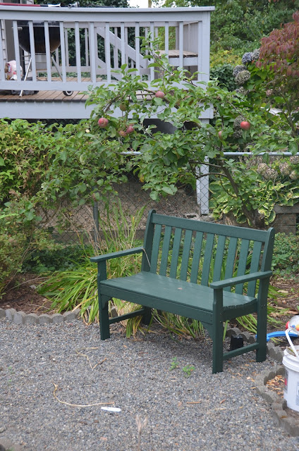 bench under an apple tree