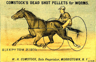 horse pulling jockey in sulky at full speed