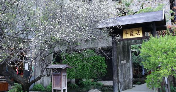 《台中.大里》IBS菩薩寺|清水模綠建築|隱身在都市中的現代化寺廟|維摩舍|半畝塘