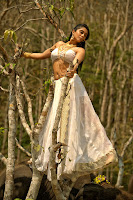 Regina Cassandra Dazzling Stills from Nakshatram TollywoodBlog