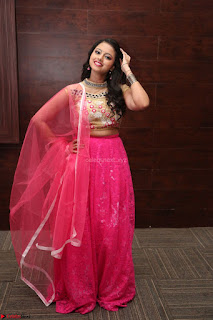 Geethanjali sizzles in Pink at Mixture Potlam Movie Audio Launch 029.JPG