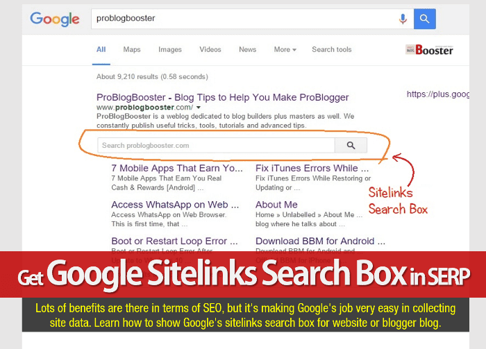 Get Google Sitelinks Search Box