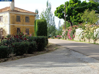 FESTIVAL ENCLOSURE / Espaço do Festival do Andanças, Barragem de Póvoa e Meadas (Dam of Póvoa e Meadas), Castelo de Vide, Portugal