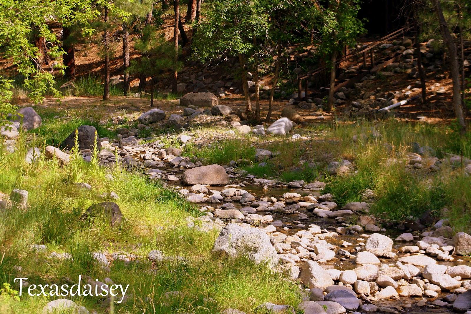 Texasdaisey Creations: Garden Textures of Ruidoso, New Mexico