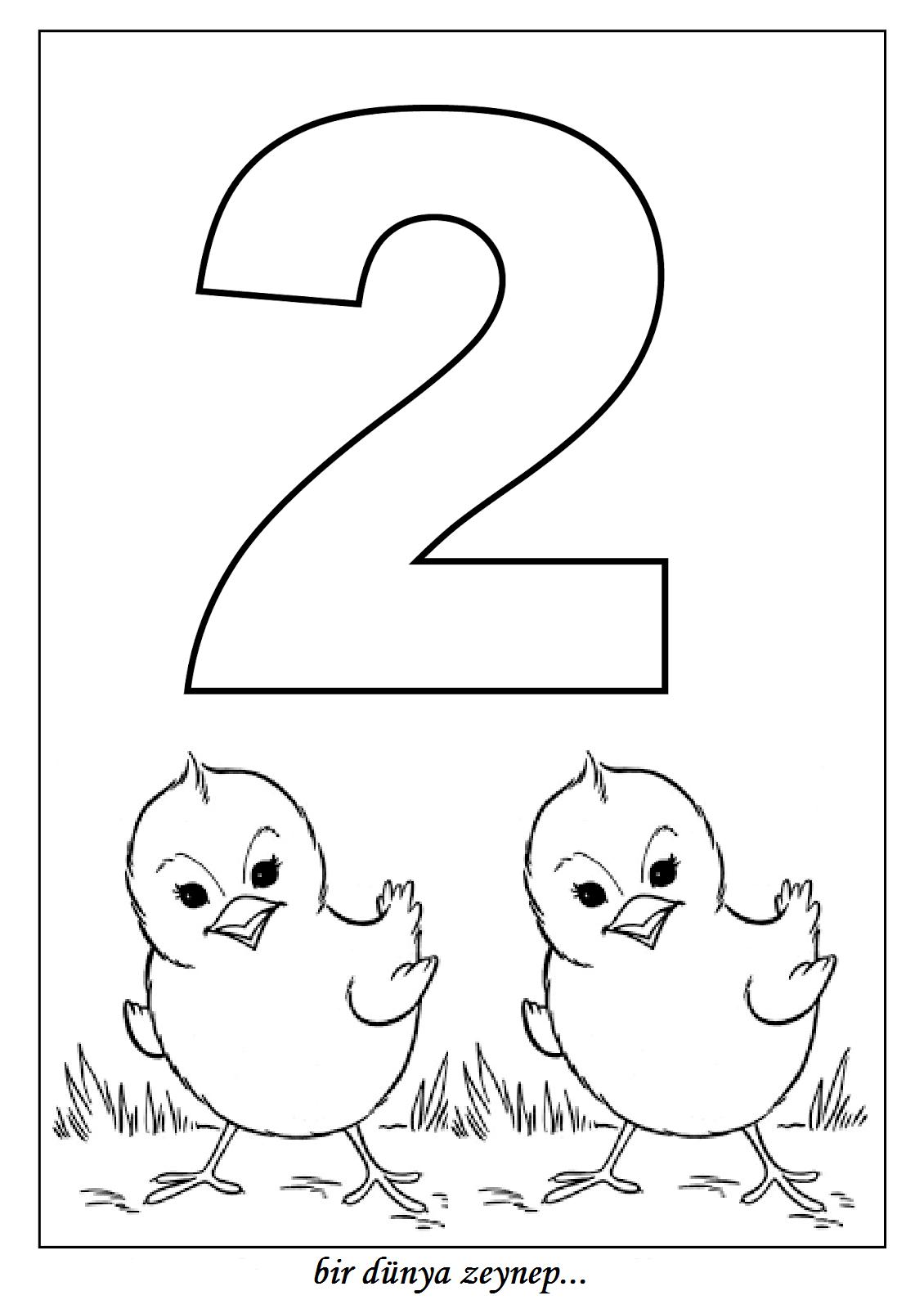 Bir Dunya Zeynep Sayi Boyama Sayfalari 2 Number Coloring