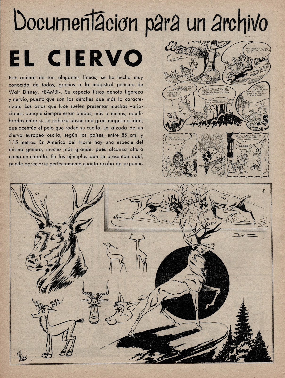 Alex nº 6, Símbolo.1955