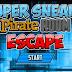 Super Sneaky Pirate Room Escape