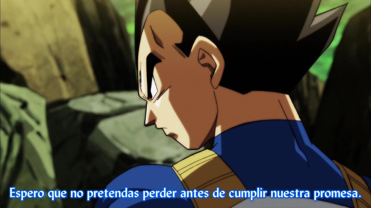 Ver Dragon Ball Super El Torneo del Poder - Capítulo 112