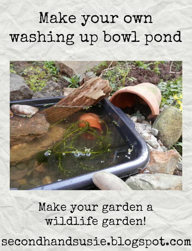 How I made my washing up bowl pond. By UK garden blogger secondhandsusie.blogspot.com #gardening #washingupbowlpond #minipond #suburbangarden #permaculturegarden #wildlifegarden