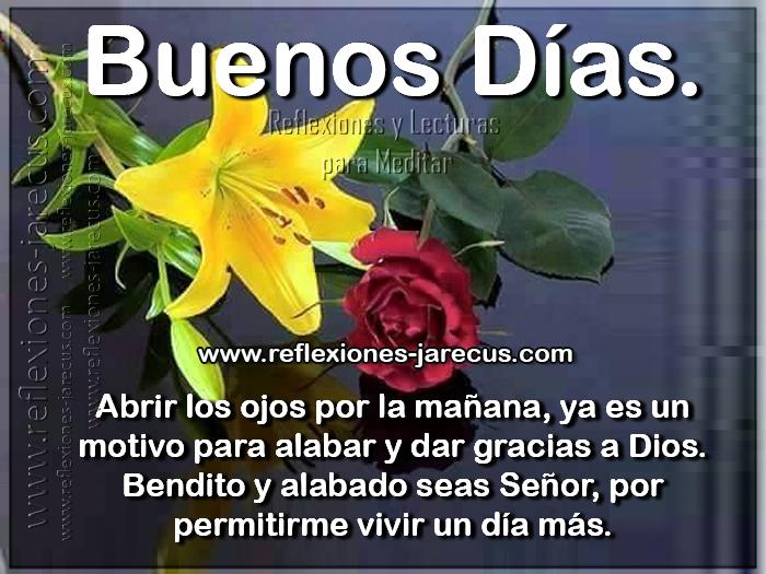 Abrir los ojos por la mañana, ya es un motivo para alabar y dar gracias a Dios. Bendito y alabado seas Señor, por permitirme vivir un día más Buenos días