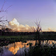 Reflections at Sunset on Cowles Bog