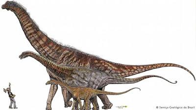 Pesquisadores anunciam a descoberta do maior dinossauro do Brasil