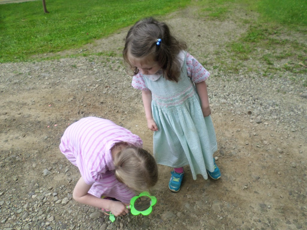 Tots And Me Growing Up Together Animal Tracks With