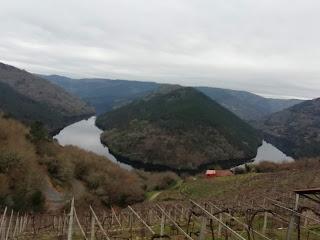 Siete Bodegas De Ribeira Sacra Participan En El Tunel Del Vino De Xantar