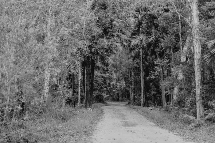noosa walking track
