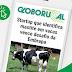 Startup que identifica mastite em vacas vence desafio da Embrapa