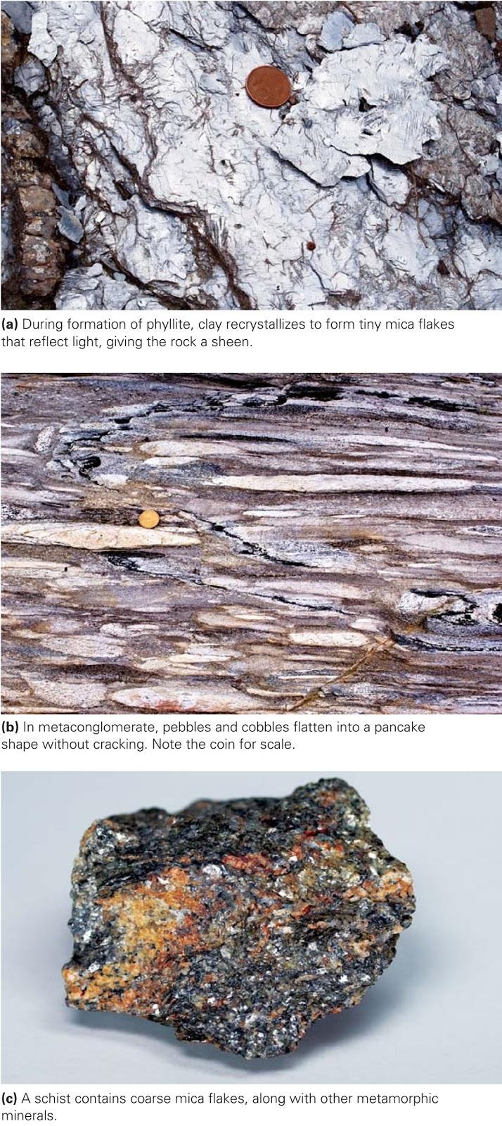 Types Of Metamorphic Rocks Learning Geology