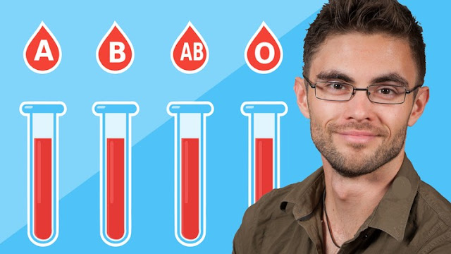 The Blood Type Diet For Your Wellbeeing - Easily Explained