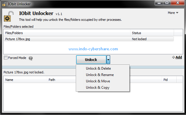 iObit UnLocker 1.1 Free terbaru