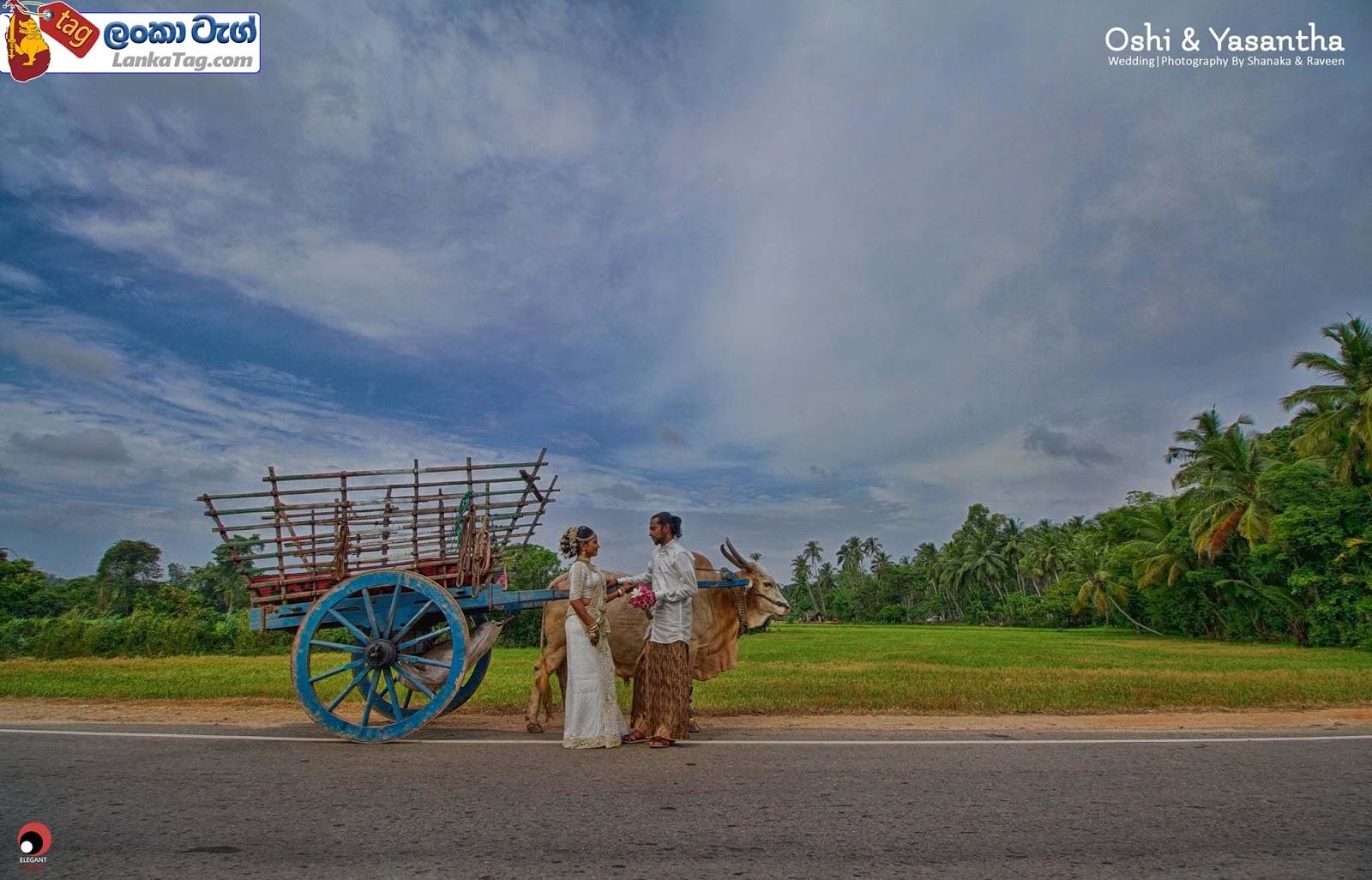 sri lankan wedding dress  30