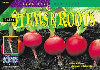 Books About Plants-Stems and Roots