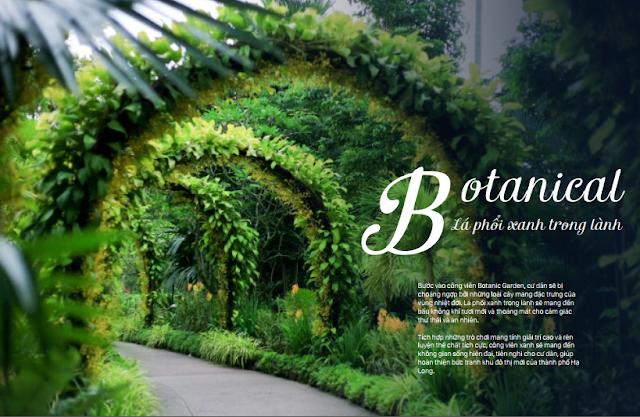 Khu vườn xanh tại Botanic Garden