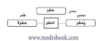 شرح استراتيجية عائلة الكلمة