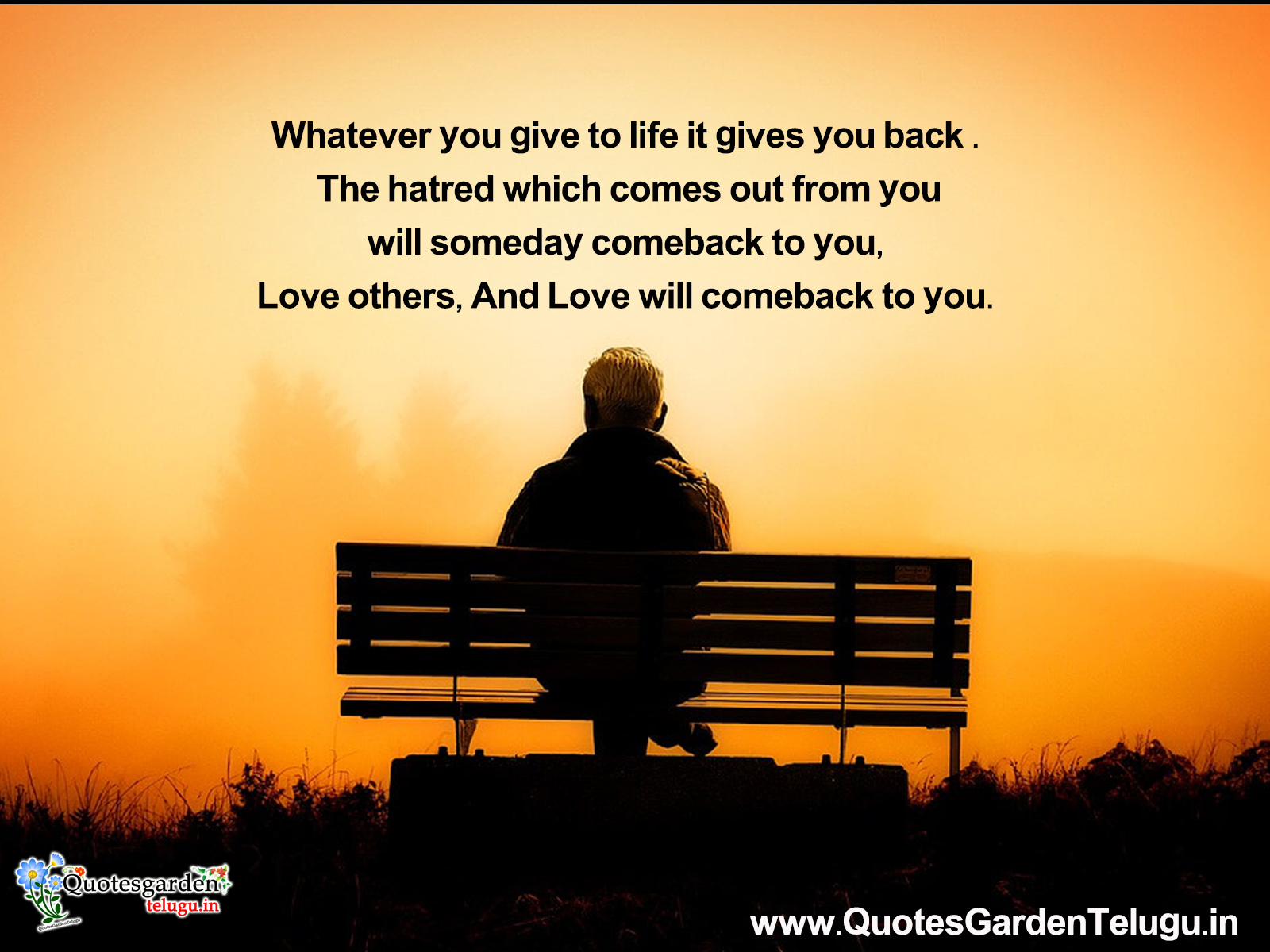 Top 20 Heart touching Quotes about life | QUOTES GARDEN