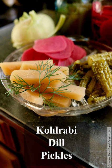 Kohlrabi spears cured in a dill brine. Like a kosher dill pickle, but using kohlrabi instead of cucumber. Do try this one at home!
