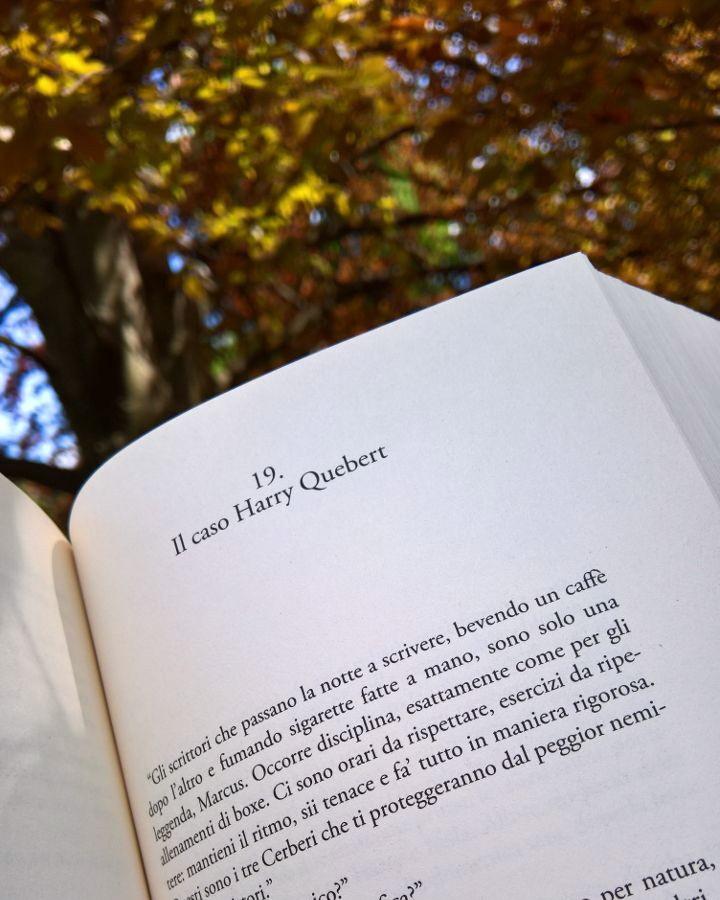la verit%C3%A0 sul caso harry quebert libro  La verità sul caso Harry Quebert - Joël Dicker - The BooksCatcher