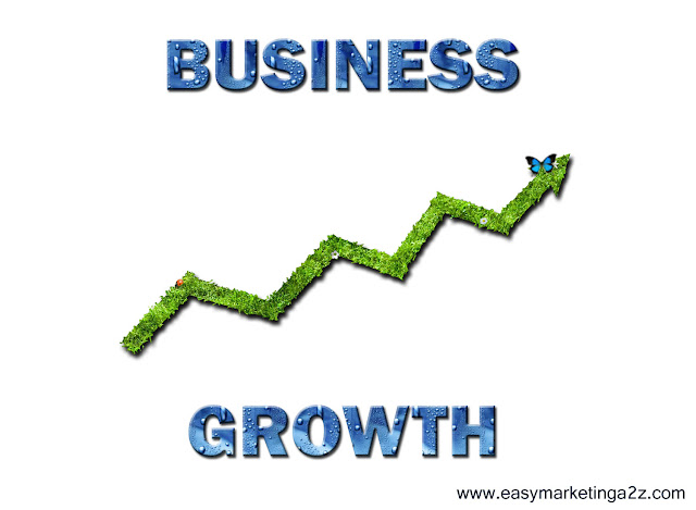 Business Growth 2