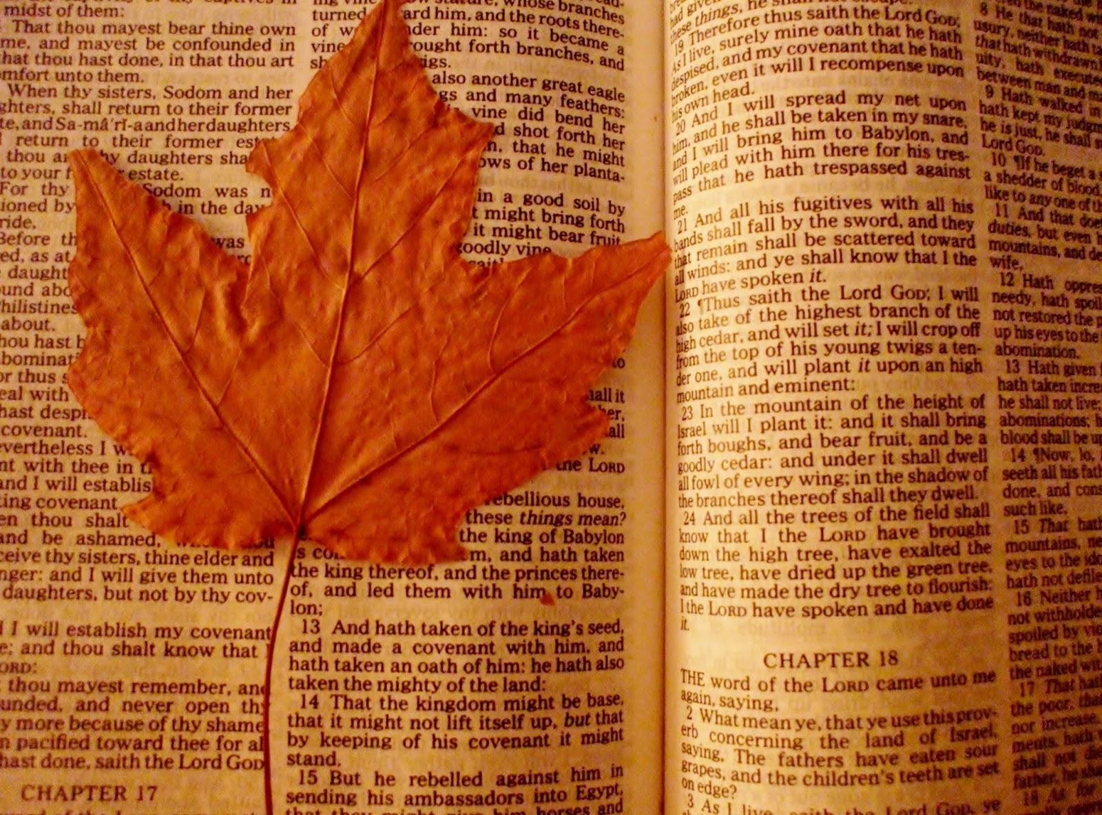 Jane Holland Prophetic Words