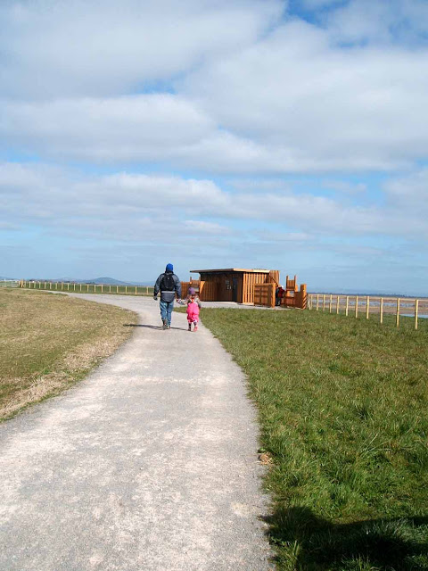five active family days out in somerset steart marsh wetlands reserve