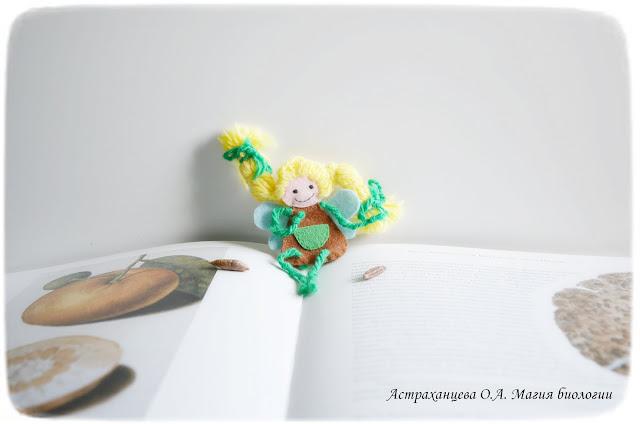 MK-kak-narisovat-botanicheskuju-illjustraciju-s-rebenkom-magija-biologii