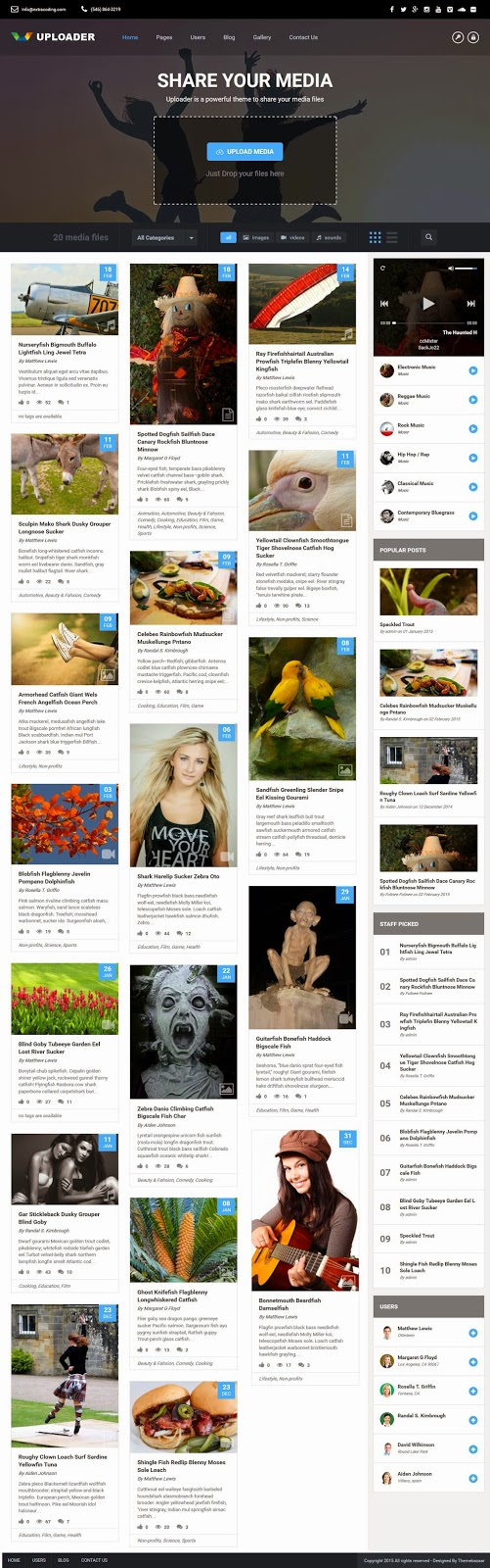 Best Responsive File Sharing WordPress Theme