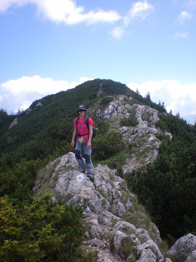cresta-montes-piatra-craiului-mica-alpes-transilvania-rumania-enlacima