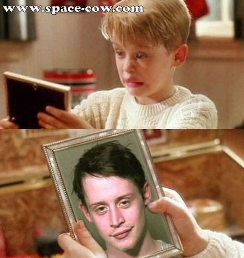 Funny Home Alone Quotes: Home Alone Buzz Quotes. QuotesGram