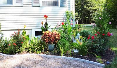 fall perennial garden