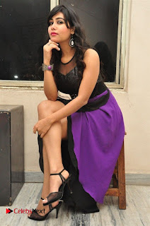 Telugu Actress Rachana Smith Stills at Money is Honey Audio Release  0062.jpg