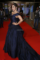 Payal Ghosh aka Harika in Dark Blue Deep Neck Sleeveless Gown at 64th Jio Filmfare Awards South 2017 ~  Exclusive 148.JPG