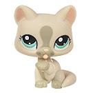Littlest Pet Shop 3-pack Scenery Cat (#1472) Pet