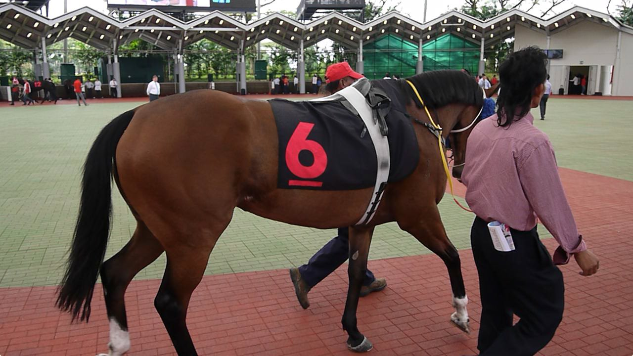 Ninja Girls Blog: [Video: Singapore] Singapore Turf Club -Go