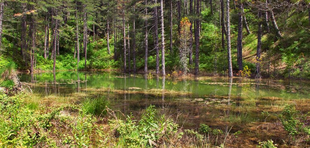 34455535c9 Ήπειρος Η ομορφιά της λίμνης Ζορίκα! - EPIRUS TV NEWS