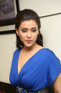 Mannara Chopra in Short Blue Dress at Rogue Movie Teaser Launch 1st March 2017 080.JPG