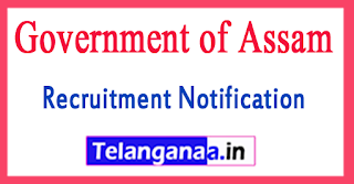 Government of Assam Office of the Treasury Officer Recruitment Notification 2017