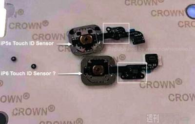 Bocoran Foto Menunjukkan Sensor TouchID di iPhone 6 Akan Lebih Awet