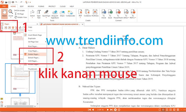 cara menghapus beberapa halaman pdf