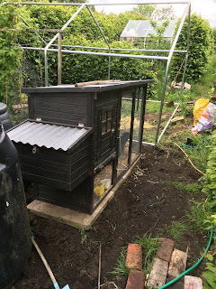 Building a new coop