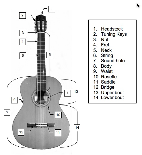 the name of guitar 39 s parts. Black Bedroom Furniture Sets. Home Design Ideas